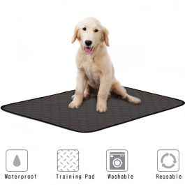 Washable Pet Diaper Mat Urine Absorbent Reusable Training Pad