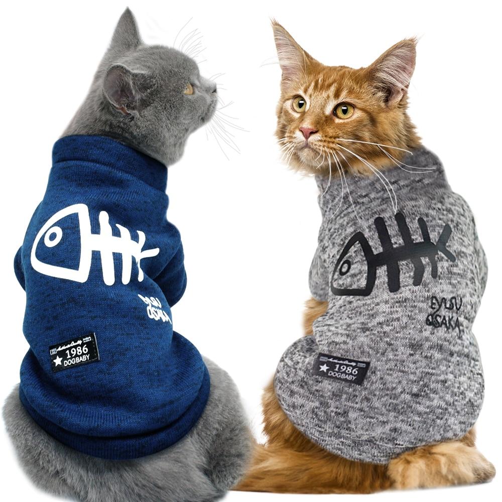 cat dog coat